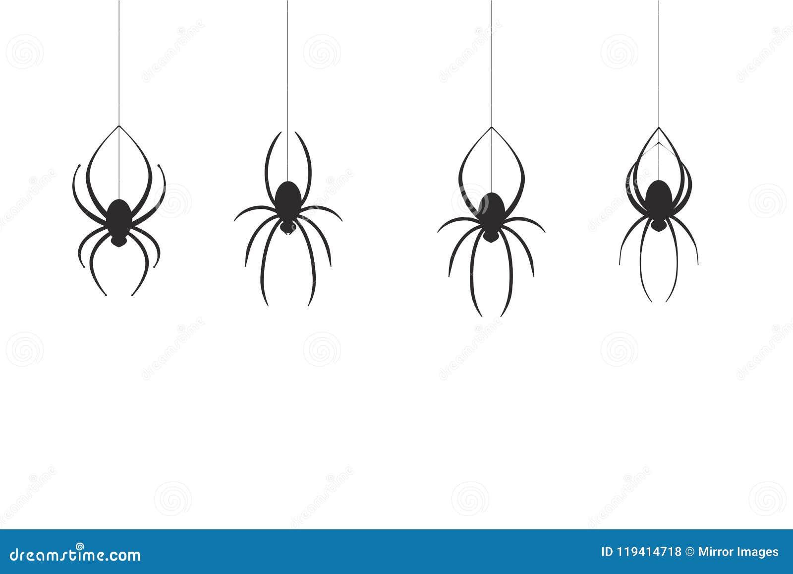 4 zwarte spinnen die onderaan één draad komen hun Web