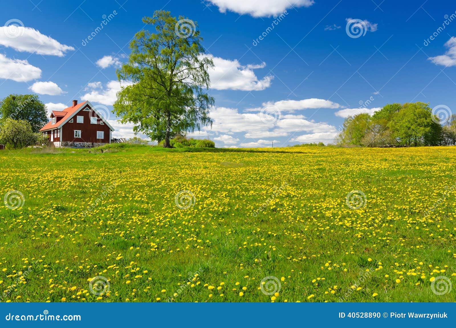 Zweeds landbouwbedrijf in Mei
