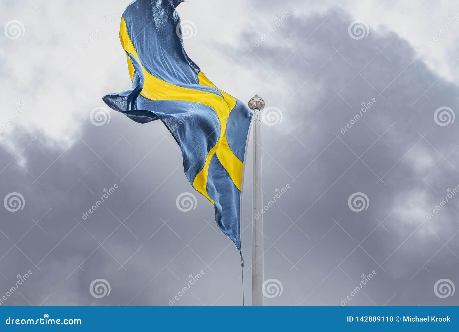 Zweedse Vlag die in de wind blazen