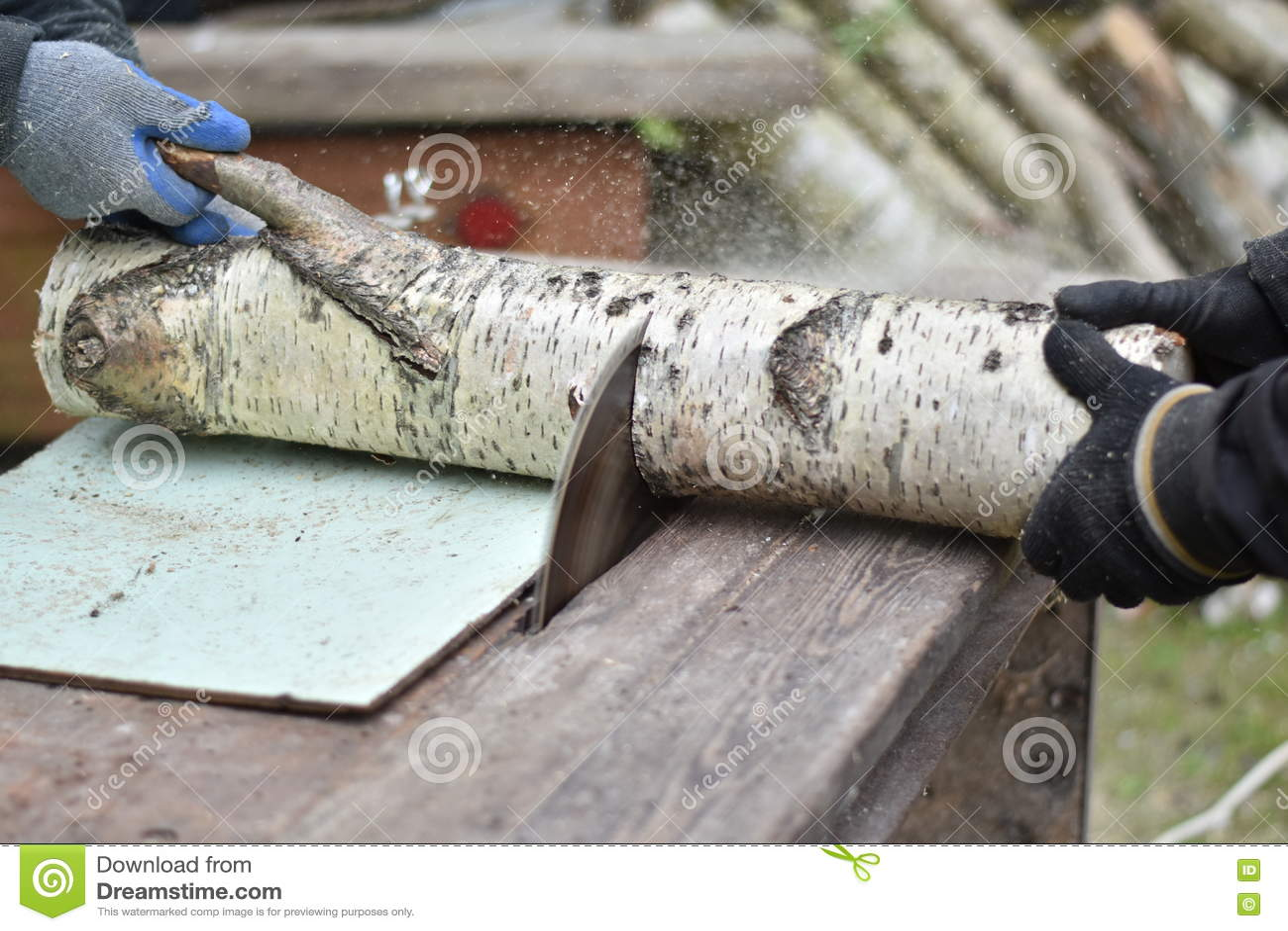 Lieblings Zwei Arbeitskräfte, Die Holz Schneiden Stockbild - Bild von metall #FL_76