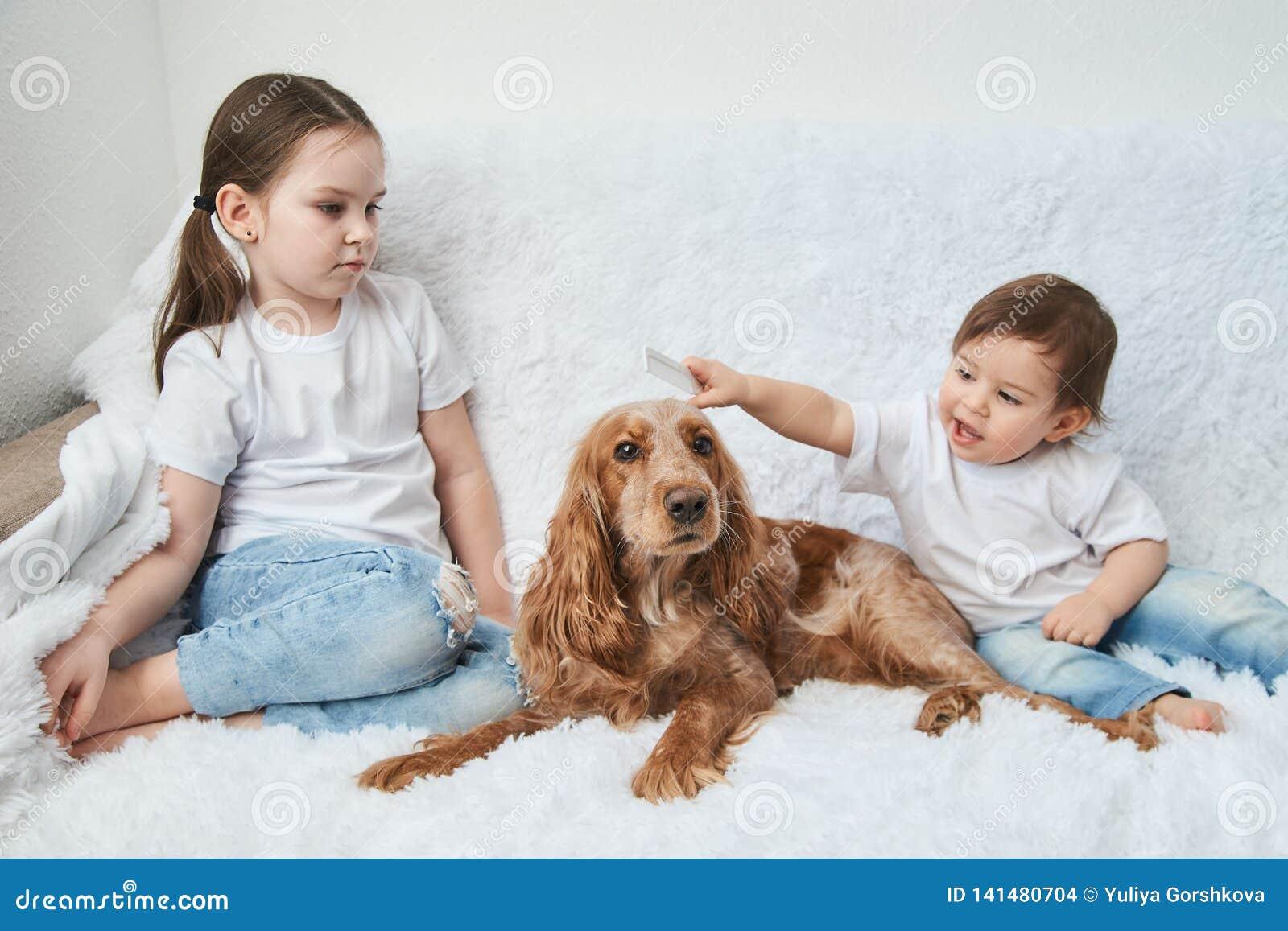 Zwei Babys, Schwestern spielen auf weißem Sofa mit rotem Hund