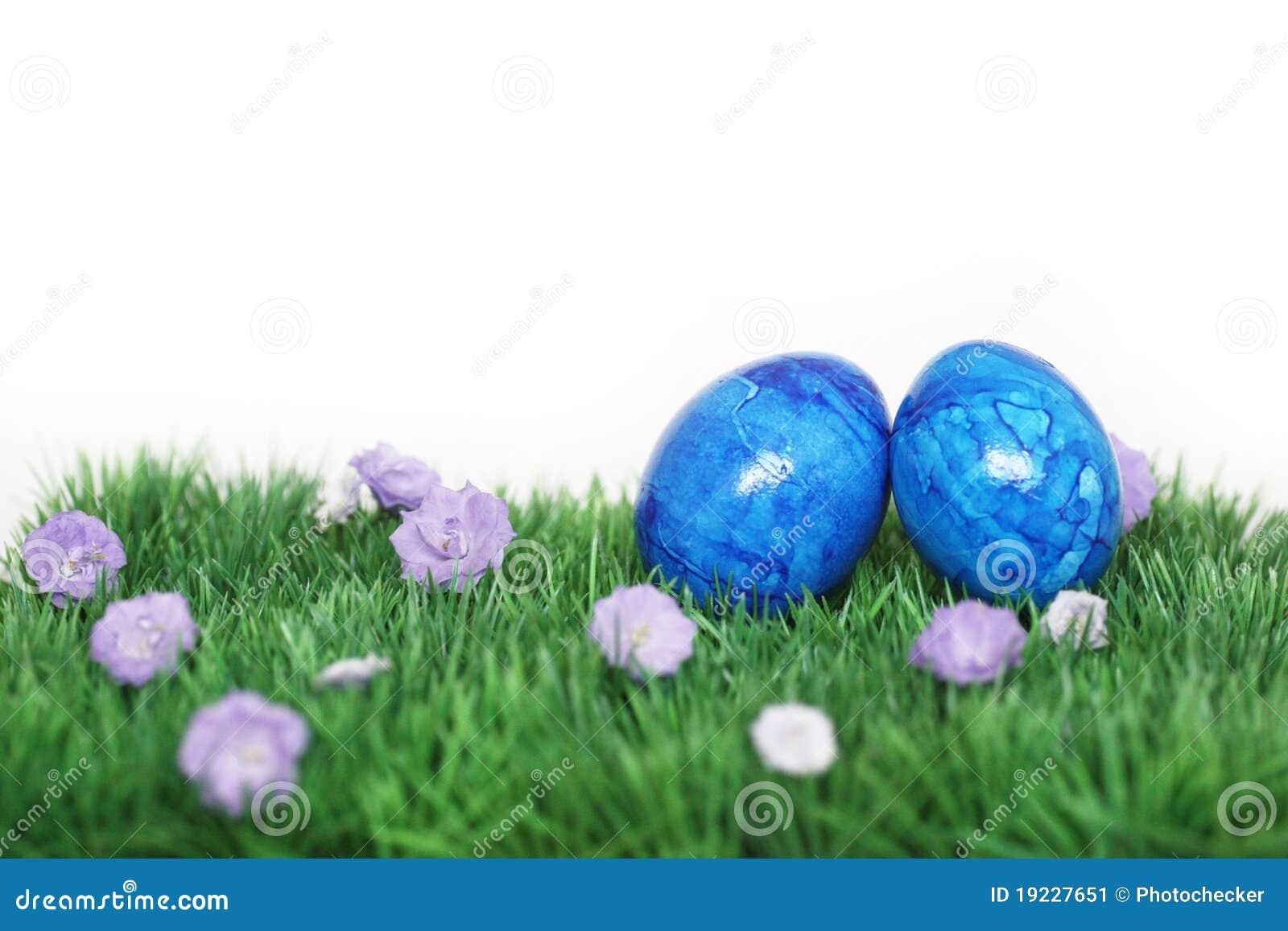 Zwei Blaue Eier Stockbild Bild Von Spaß Eier Hintergrund 19227651