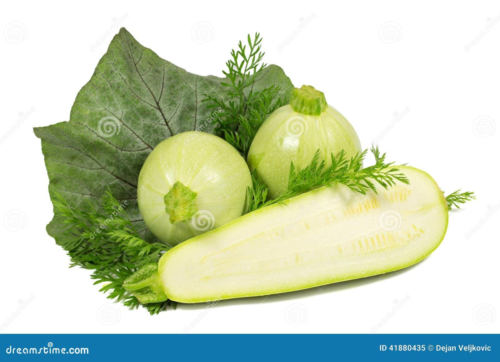 runde zucchini runde zucchini floridor f1 soul plants pflanzen f r runde zucchini satellite f1. Black Bedroom Furniture Sets. Home Design Ideas