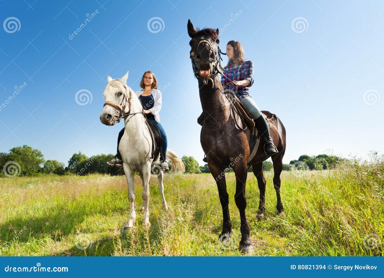 Pferde frauen Redbubble logo