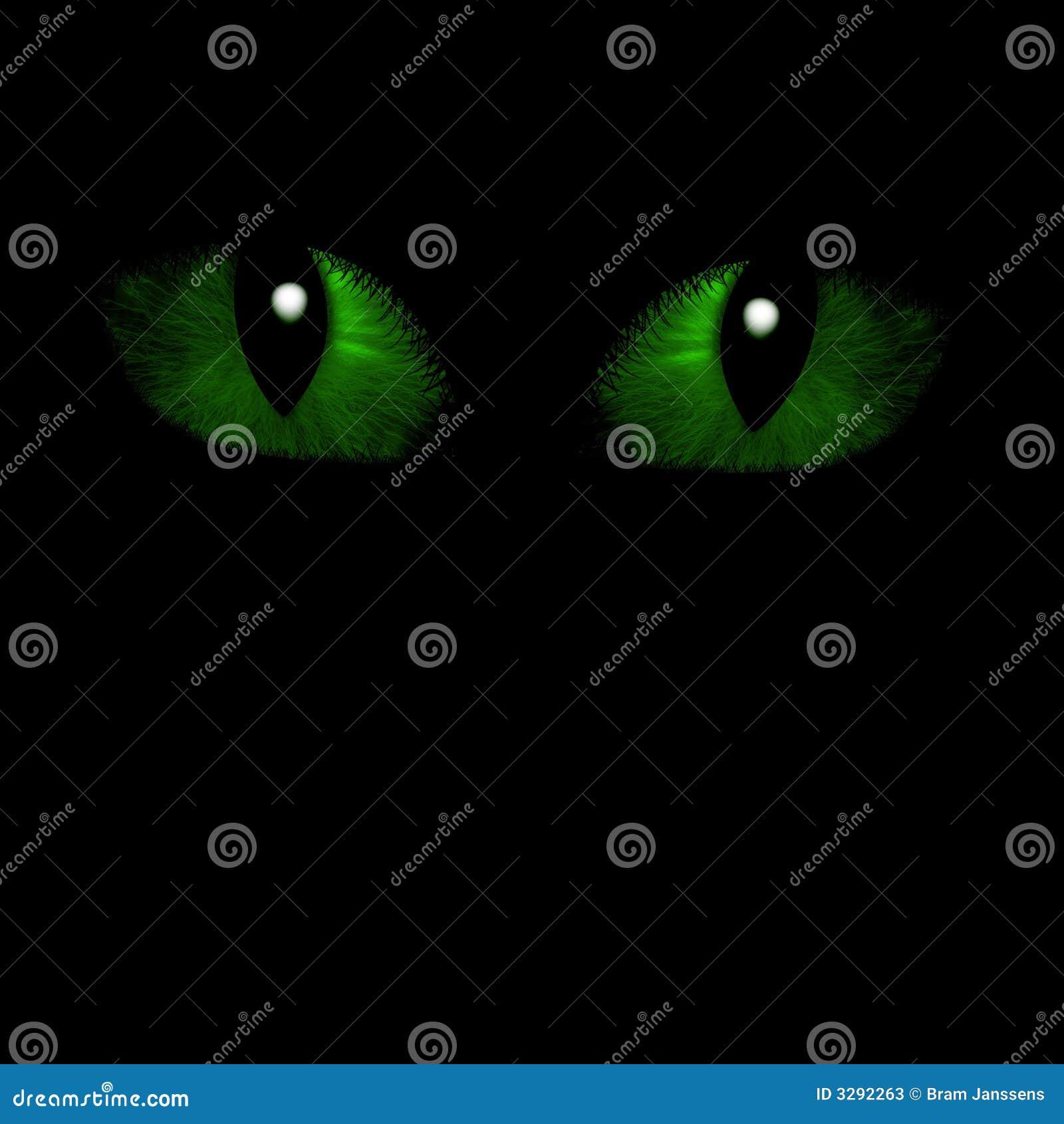 Zwei katzenartige Augen