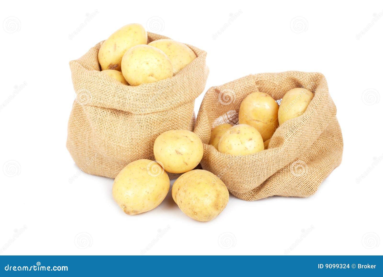 Zwei Leinwandsäcke mit Kartoffeln