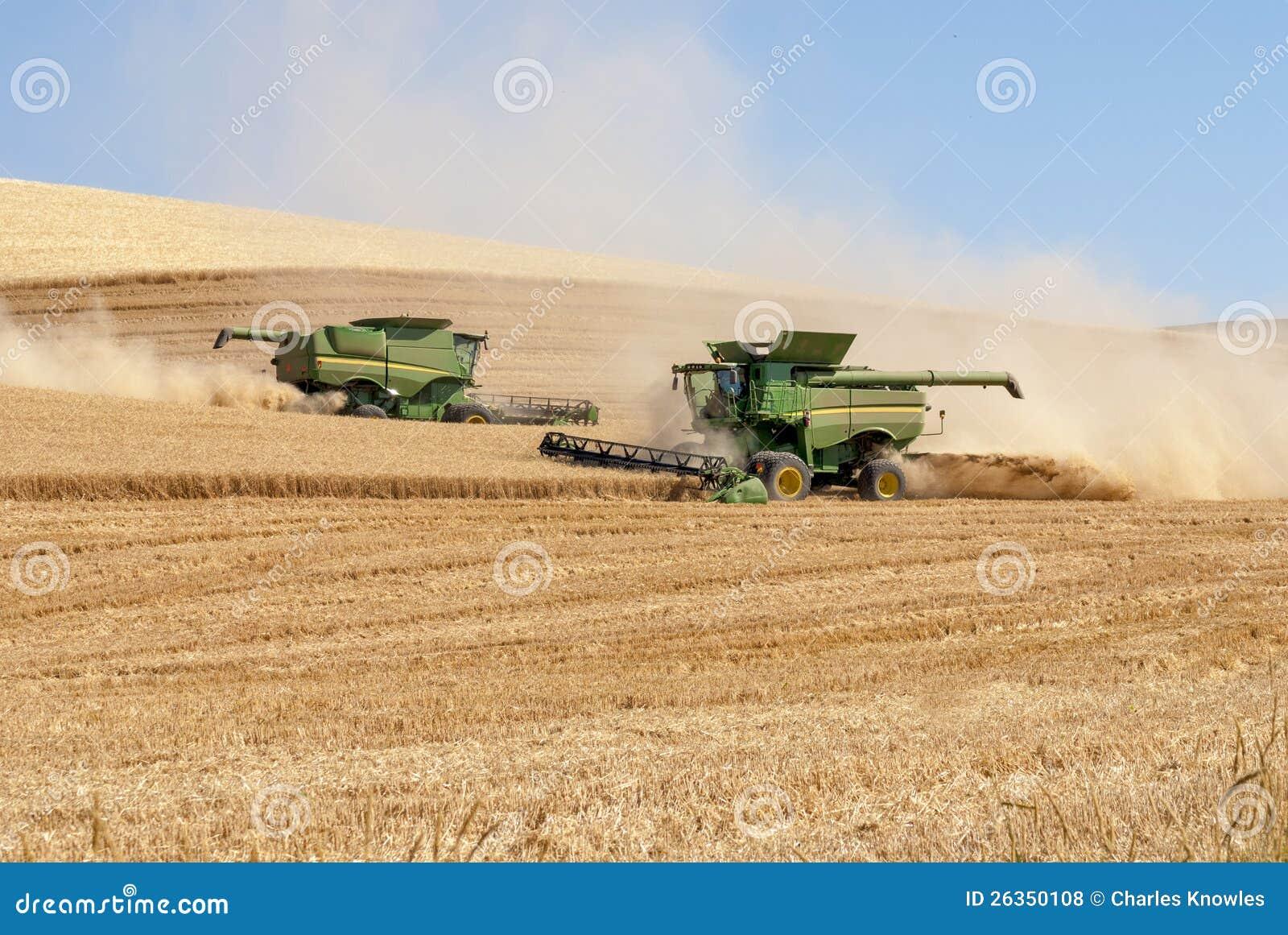 Zwei Mähdrescher, die Weizen im Nordwesten ernten