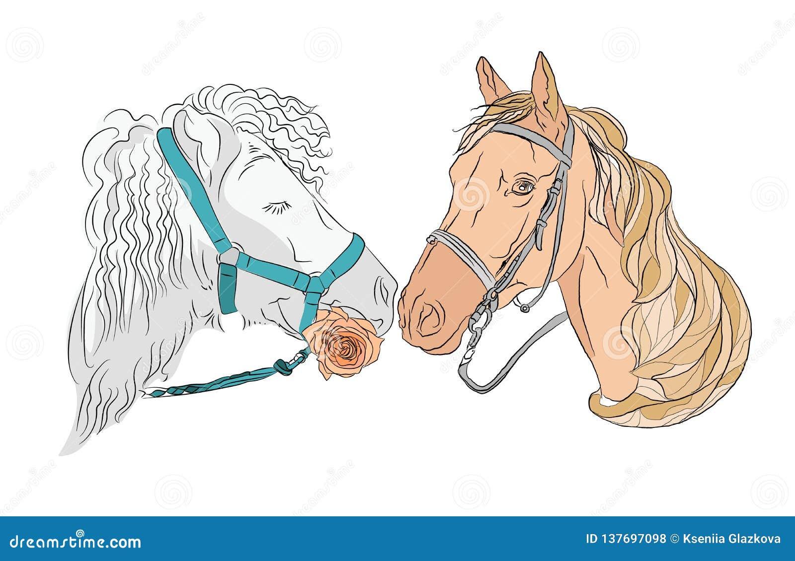 Zwei Pferde, ein Paar von schönem und von starkem