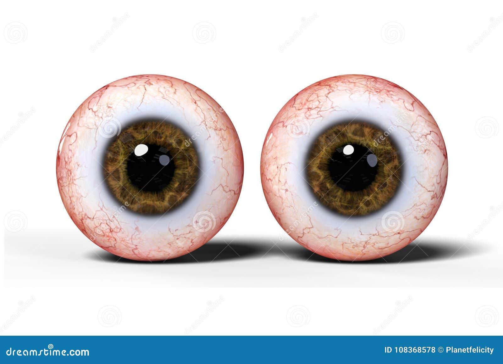 Zwei Realistische Menschliche Augen Mit Der Braunen Iris ...