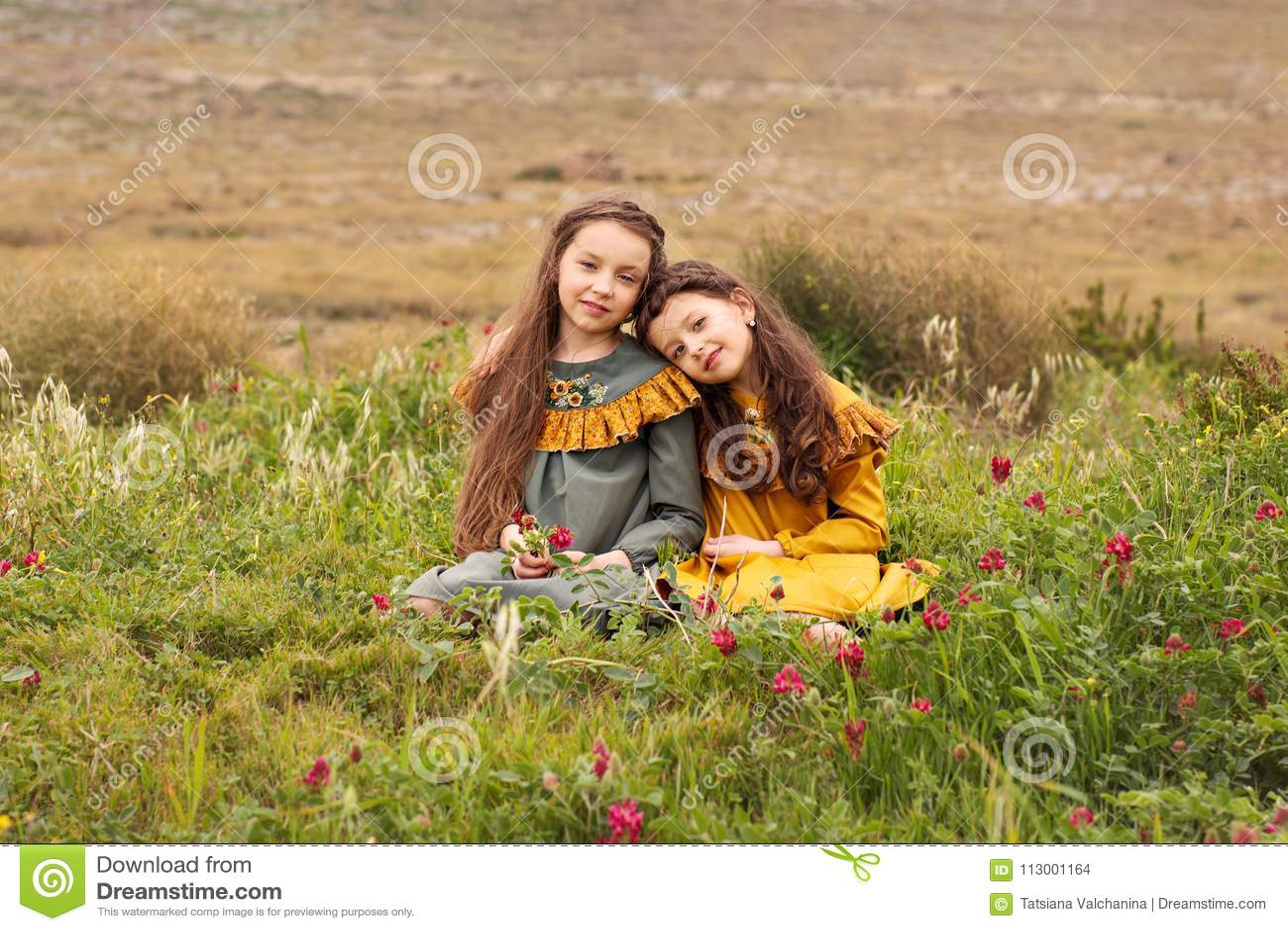 Zwei Schwesterfreundinnen in den Retro- Kleidern sitzen den Kopf, der miteinander auf der Schulter auf dem Gras mit Blumen gebeug