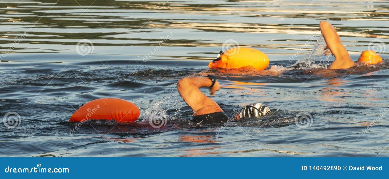Zwei siedet mit orange Schwimmaufbereitung divices im Wasser