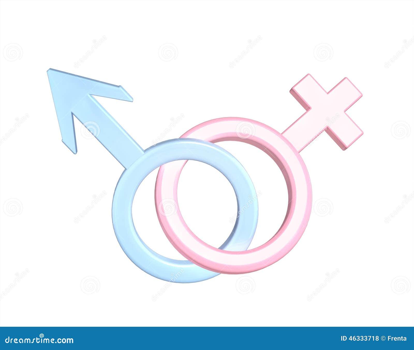 Zwei Symbole - Mann Und Frau Stock Abbildung
