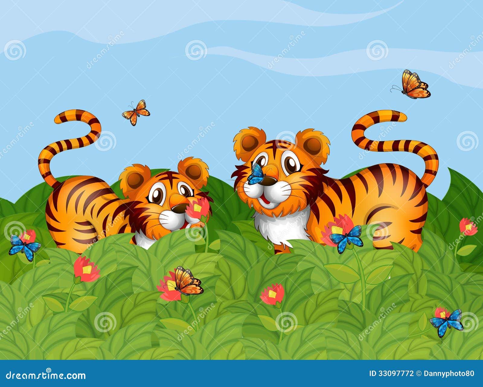 zwei tiger die im garten spielen vektor abbildung bild 33097772. Black Bedroom Furniture Sets. Home Design Ideas