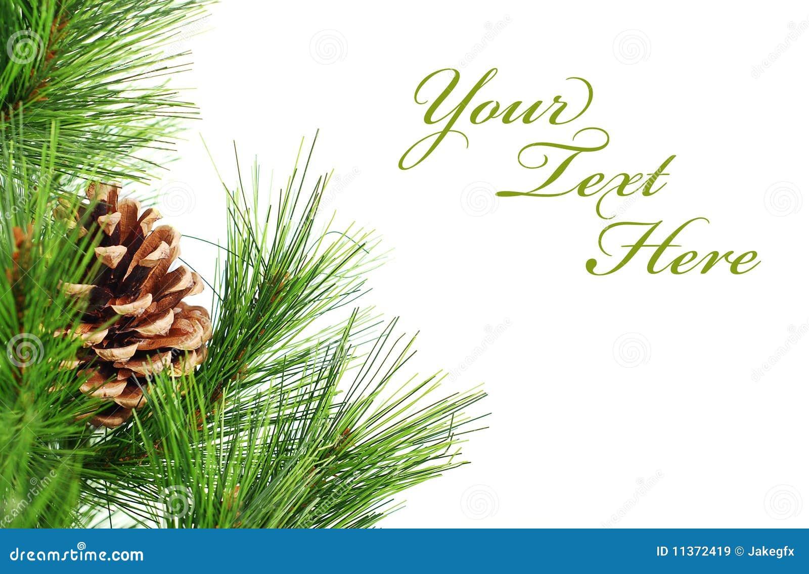 Zweig Von Weihnachten Stockbild Bild Von Abschlu