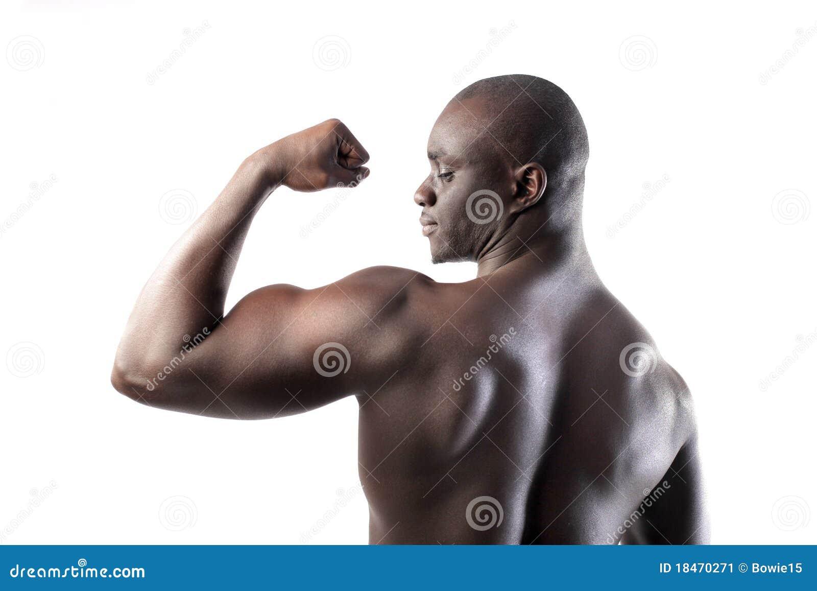 Zweiköpfiger Muskel