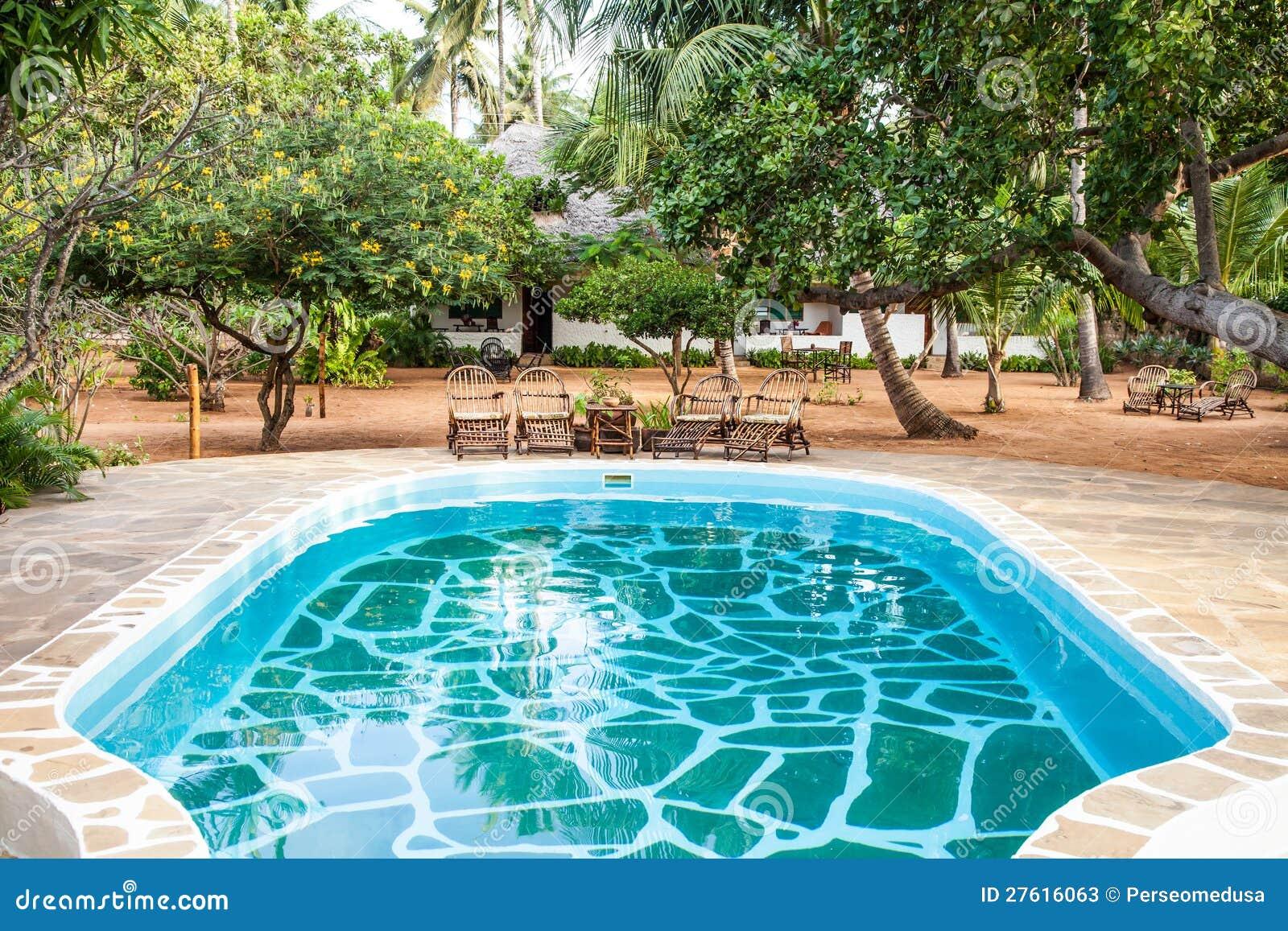 Zwembad in afrikaanse tuin stock afbeelding afbeelding bestaande uit tranquil 27616063 - Outs zwembad in de tuin ...
