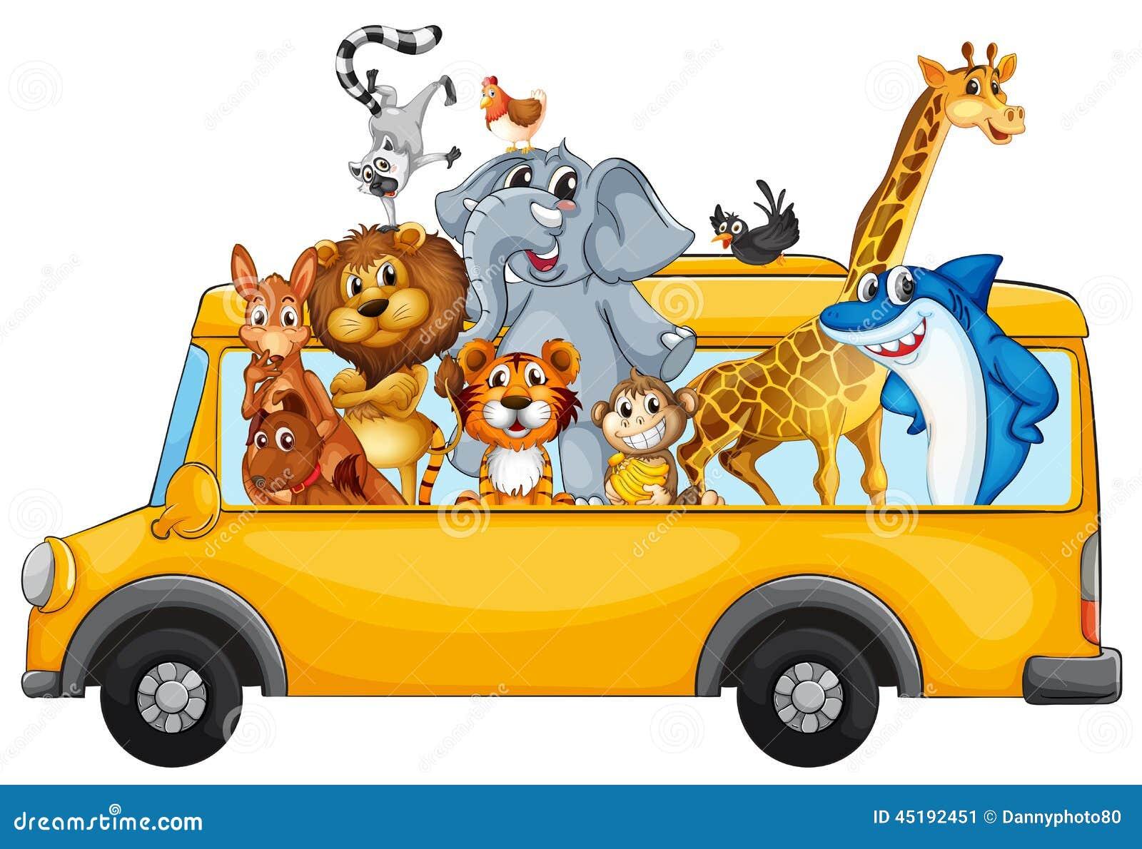 Zwierzęta i autobus