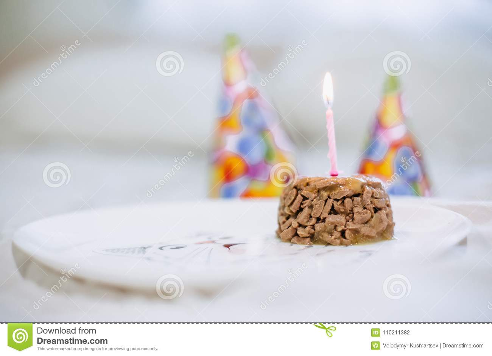 Zwierzęcia Domowego Jedzenia Tort Dla Kota Urodziny Zdjęcie Stock