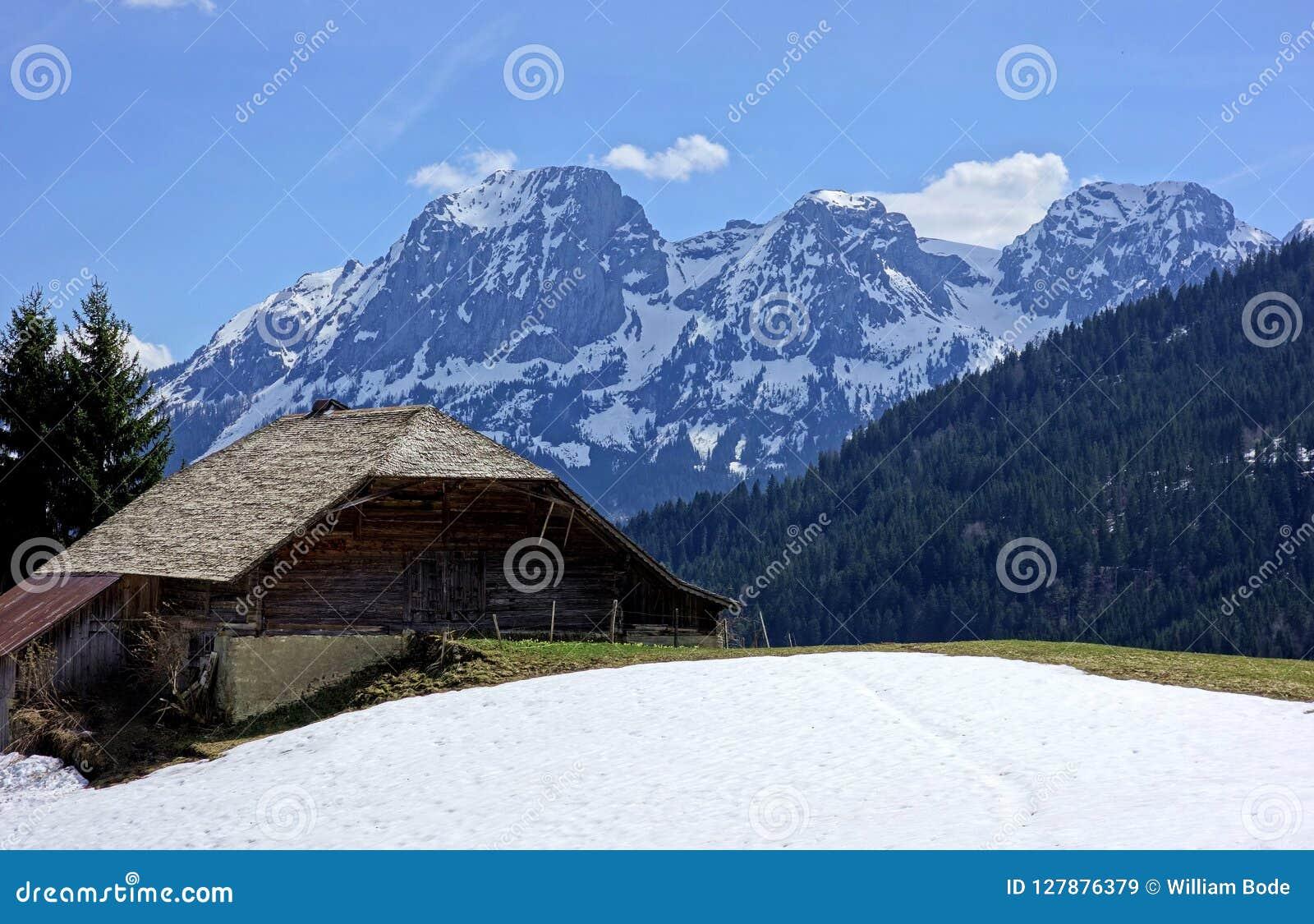 Zwitserse Melkveehouderij in de Hoge Alpen