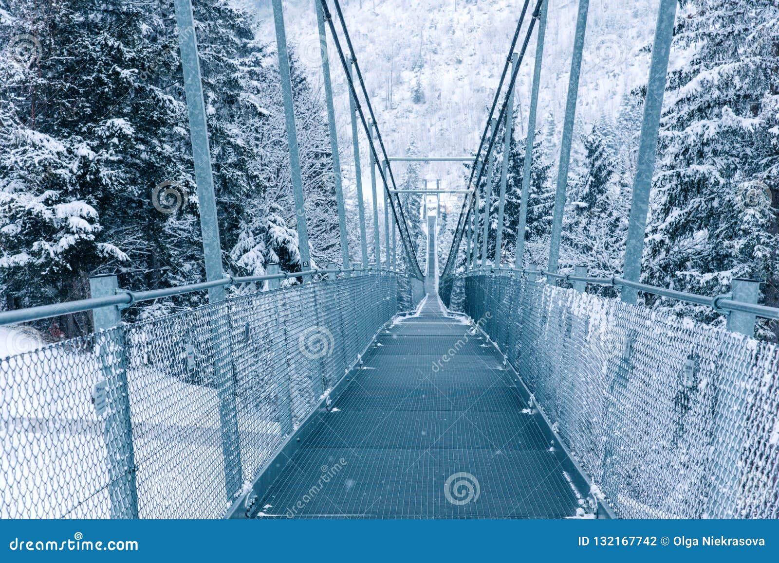 Zwyczajny zawieszenie most w Szwajcaria